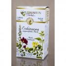 Echinacea Angustifolia Herb Tea